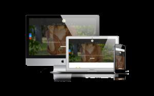Site internet pour 16 Bijoux à Biarritz